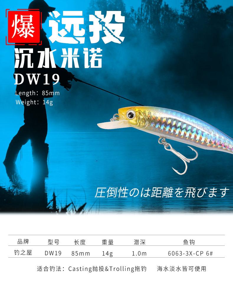 DW19_D